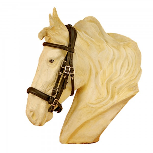 Campo Soft with Leather Reins for Cold Blooded Horses